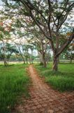 View of the walk way in Chiang Rai. Walk way of the park in soft focus look in Chiang Rai, Thailand stock photography