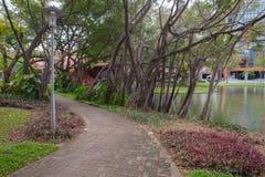 Walk way in the park. At thailand Stock Photos
