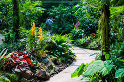 Walk way Path through the Garden Stock Image