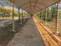 The walk way and roof. The walk way and roof and orange leaves in forest. It is a beautiful view Stock Image