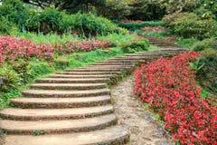 Walk Way on the seasonal flower garden Stock Image