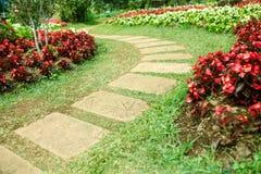 Walk Way on the seasonal flower garden Royalty Free Stock Photo