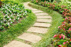 Walk Way on the seasonal flower garden Stock Images