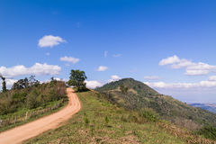 Walk way to the mountain Stock Image
