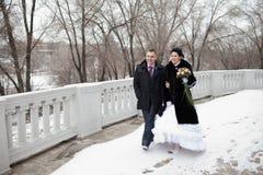 Walk in winter Royalty Free Stock Photo