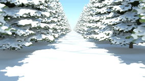 A walk through the winter fir forest in snow. Full HD. 3D-Rendering stock footage