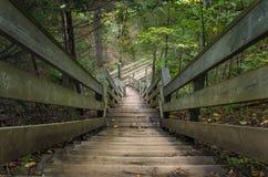 Walkaway εν τούτοις ένα δάσος Στοκ φωτογραφία με δικαίωμα ελεύθερης χρήσης