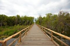 walkaway деревянный стоковые фото