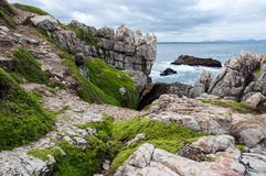 Walker Bay, Hermanus, South Africa. Rocks surrounding Walker Bay, Hermanus, South Africa royalty free stock photos
