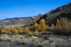 Walker Canyon, Californië Stock Foto's