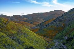Walker Canyon. Lake Elsinore Super Bloom Poppies 2019. The arial view of the mountains of Lake Elsinore, CA featuring the Super Bloom of California Poppies and stock photo
