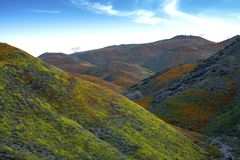 Walker Canyon. Lake Elsinore Super Bloom Poppies 2019. The arial view of the mountains of Lake Elsinore, CA featuring the Super Bloom of California Poppies and royalty free stock photography