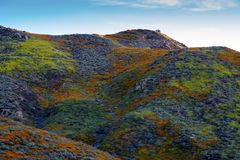 Walker Canyon. Lake Elsinore Super Bloom Poppies 2019. The arial view of the mountains of Lake Elsinore, CA featuring the Super Bloom of California Poppies and royalty free stock photos