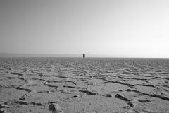 Walker in the desert Royalty Free Stock Photography