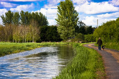 Walker and dog on towpath. The bridgwater and taunton canal dog walker Royalty Free Stock Images
