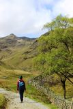 Walker footpath, Grisedale, English Lake District Stock Image