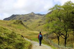 Walker footpath, Grisedale, English Lake District Royalty Free Stock Images