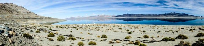 Walker Lake Panorama Stock Foto's