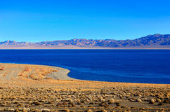Walker Lake shoreline i Nevada arkivfoto