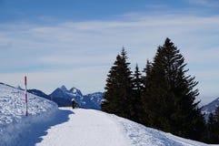 Walker on the mountain Royalty Free Stock Photos