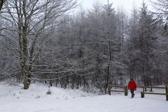 Walker on a snow covered country path - England Stock Photo