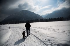 Walker in winter with dog. With mountains, snow Stock Photos
