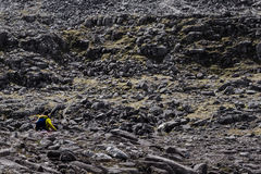 Walker in yellow traversing a rock field in Scottish Highlands Stock Photo