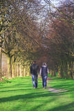 Walkers. A young couple walking down an avenue of trees Royalty Free Stock Photography