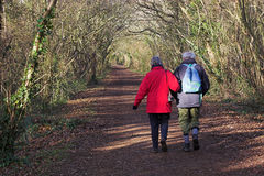 Walkers 5582. An elderly couple walking along a woodland path Stock Photography