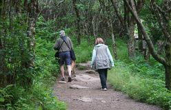 Walkers on Craggy Garden Trail Asheville North Carolina. Man and women hike the Craggy Garden Trail off the Blue Ridge Parkway near Asheville in North Carolina Stock Photo
