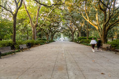 Walkers in Forsyth Park royalty free stock photography