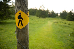 Walkers icon Stock Photography