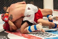 Walki bez reguł lub MMA Zdjęcie Royalty Free