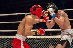Walki bez reguł lub MMA Fotografia Royalty Free