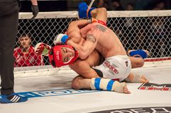 Walki bez reguł lub MMA Zdjęcia Stock