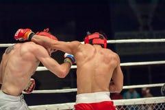 Walki bez reguł lub MMA Obrazy Stock