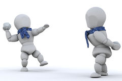 walki snowball Obraz Stock