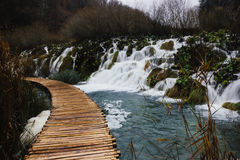Walking across the lakes in Plitvice Lakes National Park Royalty Free Stock Image