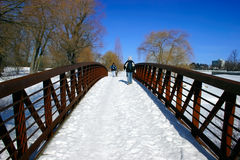 Walking Across the Snowy Bridge Stock Photography