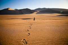 Walking alone in the desert with footsteps stock images