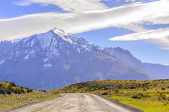 Walking alone. A guanaco walking alone on the road to the park torres del paine Royalty Free Stock Images