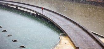 Walking alone at winter Royalty Free Stock Photography
