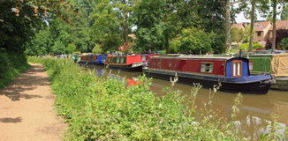 Walking along the riverside river wey, godalming Stock Photography