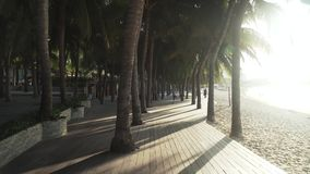 Walking along the tourist promenade with palm trees on Dadonghai beach at dawn stock footage video. Sanya, China - April 03, 2017: Walking along the tourist stock footage