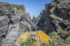 Walking around the coast path to stepper point cornwall uk Stock Photos