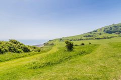 Walking aroundthe hills of Eastbourne, United KIngdom. Beachy head near Eastbourne, Sussex, United Kingdom Royalty Free Stock Photography