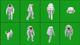 Walking astronaut in different positions with green screen background
