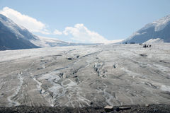 Walking on the Athabasca Glacier Stock Photography