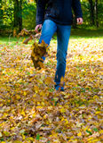 Walking through the autumn Stock Photo