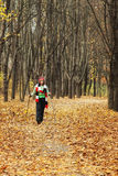 Walking in autumn forest Stock Photos